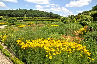 Villandry - le jardin d'été