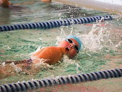 EM160143.jpg (mtfbwy) Tags: northolmsted rec dolphins team pool swimming swim gwyneth