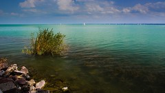Balaton Lake, Hungary (Vadim Tsymbalyuk) Tags: lake landscape outdoor bright zuiko 24mm balaton