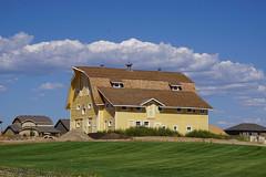 Colorado Color (Let Ideas Compete) Tags: barn yellow sky clouds gambrel gambrelroof colorado whitetrim sunny color colors cielo restoration remnantofthepast brightsunshinyday greengrass lawn