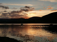 Sunset (moniquerebanks) Tags: cygnets swan sailingboats ullswater lakedistrict lake landscape landschap landschaft hills water meer scenery see sunset dusk view nature nationalpark reflection