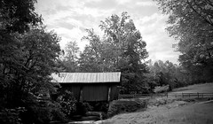 239/366 The Troll Bridge (Bernie Anderson) Tags: ifttt 500px campbells covered bridge black white bw outside nature folkloristic trolls