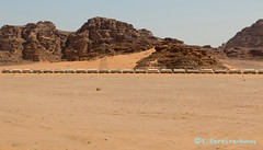 Train Combo transporting Potash, Wadi Rum, Jordan (ssspnnn) Tags: trem train ferrovia ferrocarril potash fertilizer adubo fertilizante snunes spnunes spereiranunes nunes canoneos70d jordan jordania wadirum desierto deserto desert