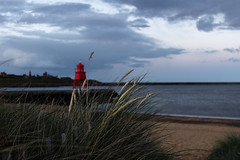 Through the Grass (darylswalker) Tags: canon canon100d groyne southshields sunset seascape beach coast