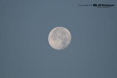 Full Moon early Morning In September