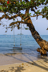 Old swing (Ivanov Andrey) Tags: sea ocean ropeladder ladder rope swing coast sky clouds beach shore bay water reflection blue cape sand tree explore harbor horizon island journey landscape nature tourism wave tide waves white wind thailand ngc