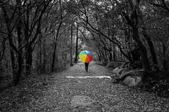 Matheran-4929_Selective (Satish Chelluri) Tags: satishchelluri satishchelluriphotography matheran maharastra umbrella mansoon