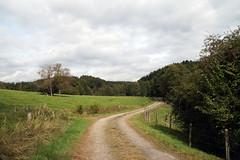Von Drabenderhhe nach Marienberghausen (dieter.steffmann) Tags: bergischesland oberbergischesland much herfterath grafengelbertweg