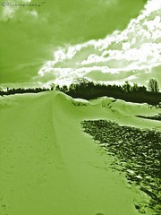 #Snowdunes (Wishtography) Tags: winter snow green nature snowdrift scifi shotoftheday snowdunes capturedmoment streamzoo thiscooledit