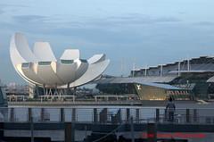 the dawn (tomzcafe) Tags: singapore marinabay nikkor852