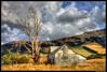 Dead Tree, Dead Barn! (Geoff Trotter) Tags: old newzealand christchurch blackandwhite canon deadtree nz hdr chch photomatix 50d canterburynz 3exp canon50d deadbarn worldhdr geofftrotter stunningphotogpin deadtreedeadbarn