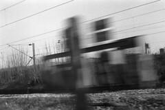 (20x25) Tags: blackandwhite blur film train 135 rodinal industar foma zorki4k