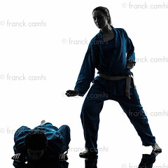 karate vietvodao martial arts man woman couple silhouette (Franck Camhi) Tags: shadow 2 two people woman white man male sports girl silhouette female cutout pose asian person one 1 vietnamese exercise fulllength young couples martialarts indoors karate whitebackground kungfu uniforms studioshot posture fighting adults defeat twopeople isolated position caucasian vanquish fightingstance exercising vietvodao combativesport