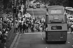 346/365 () Tags: city summer people blackandwhite bw cars buses trafficlight taxi sydney january australia stop townhall hydepark cbd redlight australiaday doubledeckerbus 456 roadcrossing elizabethstreet buslane vintagebus dotline
