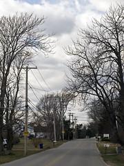 _1080862 (Boneil Photography) Tags: trees silhouette ma prime pentax takumar massachusetts panasonic m42 manualfocus 50mmf14 haverhill screwmount supertakumar m43 wardhill microfourthirds boneilphotography dmcg10 brendanoneil