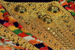 MG_3458 (PRATHAPSTOCKIMAGE) Tags: india elephant festival canon religion decoration kerala trissur pooram nettipattom eos60d