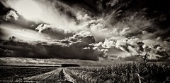 Eastern Frisian Clouds (Explored) (chmeermann) Tags: sky bw nature field clouds germany easte