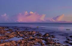 Tropical Sunrises (Ray Swann) Tags: blue sky beach water sunrise sand day fishermen australia darwin mangroves northern anzac foreshore territory rockds