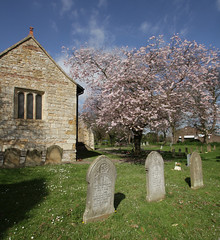 100-IMG_6411a (tjsphotobrigg) Tags: uk england canon spring blossom churches lincolnshire churchyard towns gravestones immingham