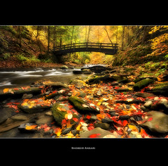 (Shobeir) Tags: statepark longexposure bridge autumn newyork fall nature water creek river landscape colorful outdoor hiking wideangle foliage changing change fingerlakes woodenbridge fallenleaves moravia fillmoreglen fillmoreglenstatepark shobeiransari
