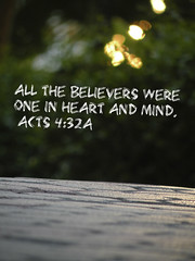 Acts 4:32a (Sapphire Dream Photography) Tags: life trees light two inspiration tree brick green love church stone silver religious four gold lights one bush truth power christ heart god bokeh path unity religion jesus christian trail mind blurr chapter bushes religions 34 scripture christians gospel bibles act testimony scriptures acts verse verses thirty holyspirit testament believers bibleverse godsword 432 testimonies 432a holyinspiration acts432 acts432a