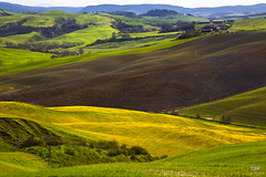 Farm field in the Spring (doveoggi) Tags: italy brown green yellow spring tuscany plowed 2569 photocontesttnc13
