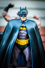 I Hate Waging War on Crime in the Daylight (misterperturbed) Tags: batman dccomics squareenix bane darkknight justiceleagueofamerica jli dcdirect playartskai