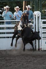 Tak_CPRA_2016-4854 (takahashi.blair) Tags: coachtak rodeo blairtakahashitakahashiblaircoachtakblairtakahashi pincher creek barrel racing bronc rope bareback steer bullriding