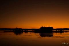 Pelican Island (core_personal_training) Tags: australia nsw centralcoast theentrance longjetty jetty water sea lake sun sunset sunrise sky landscape bird fauna nature animal tree island dslr nikon nikond3300 nikkor1855