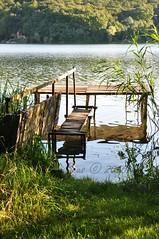 Reflections (Beata*) Tags: hungary lake orf nature reflections