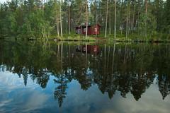 Loin de la foule (Samuel Raison) Tags: finlande finland mkki mkkilife solitude loneliness silence calme calm quiet quietness paisible nature nikon scenery