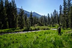 Along the Middle Fork San Joaquin River (speedcenter2001) Tags: outdoor hiking backpacking backcountry mountains wilderness anseladamswilderness highsierra sierranevada sierra johnmuirtrail