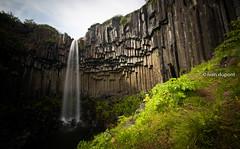 A lot of water, Svartifoss, Skaftafell National Park, South Iceland (monsieur I) Tags: basalt europe iceland icelandic longshutterspeed monsieuri nature roadtrip skaftafell stones summer svartifoss travel water waterfall