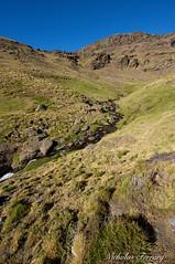 Sierra Nevada (Nicholas Ferrary) Tags: nicholasferrary nature nikon nikond800e nikond810 d800e d810 nikon1424mm28 nikon1424mm spain spanishwildlife sierranevada vally mulhacen rock
