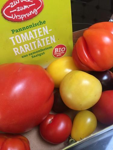 Pannonische Tomaten Raritäten
