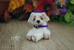matilda05 (Zhanna Zolotina) Tags: teddy bear ooak dog miniature handmade blythe barbie tinydolhousetoyzz toyzz altair dollhouse puppenhaus
