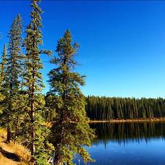 #Goldeye #Lake as seen from the #Goldeye #conferencecenter #Nordegg #explorealberta