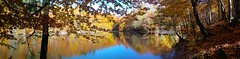 what is a filter? 2 (macide bahar) Tags: yedigller panorama woods autumn