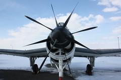 Fairey Gannet @ Luftwaffe Museum (NunoCardoso) Tags: berlin museum airplane fighter fairey gannet luftwaffe
