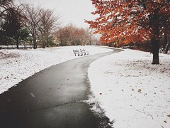 (AnthonyTulliani) Tags: winter snow path iphone iphoneography vscocam uploaded:by=flickrmobile flickriosapp:filter=nofilter