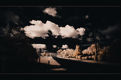 over yonder (nighstar) Tags: trees color dark landscape ir australia olympus panasonic queensland infrared vignette cloudscape 85a 1428 m43 14mm fauxcolor carwindowshots epl1