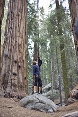 Joey keeps looking up. (Dane Hendren) Tags: trees joey sequoia