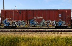 Searius (Sk8hamburger) Tags: railroad art train painting graffiti paint tag rr boxcar graff piece tagging freight searius paint spray ifuls