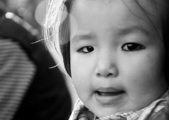 tenzin! (ajinkya chabukswar) Tags: portrait girl kid child tibet littlegirl tenzin tibetangirl tibetankid