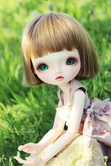 """Fantine"" (Tsubasa Paradis) Tags: doll ashley bjd typea leeke"