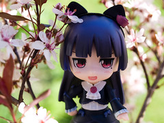 Sakura Breeze -Nendoroid Kuroneko- (Jam-Gloom) Tags: flowers plant anime macro cute smile grass cat garden cherry toy japanese spring doll cosplay blossom sister good gothic manga ears olympus company lolita kawaii figure cherryblossom sakura gsc otaku figurine catears 144 kuroneko e330 nendo olympuse330 bfigure jfigure goodsmilecompany nendoroid toyography dollography oreimo mylittlesistercantbethiscute orenoimoutogakonnanikawaiiwakeganai nendoroidkuroneko nendoroid144