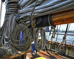 Lots of rigging (Forsaken Fotos) Tags: md ship pride tallship fellspoint privateerfestival