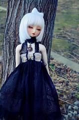I really miss winter (Purple  Enma) Tags: blue winter cold girl ball cool doll dolls sweet dream super sd heat nana bjd resin dollfie volks miss swd jointed