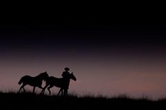 Um quadro gacho... (Eduardo Amorim) Tags: brazil horses horse southamerica field brasil criollo caballo cheval caballos mare campo cavalos pelotas pferde cavalli cavallo cavalo pferd riograndedosul pampa champ hest hevonen campanha brsil chevaux gua  yegua amricadosul hst  amriquedusud   sudamrica suramrica amricadelsur  sdamerika crioulo caballoscriollos criollos  tropillas  costadoce americadelsud tropilhas tropilla  crioulos cavalocrioulo americameridionale caballocriollo auffangen eduardoamorim cavaloscrioulos
