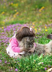 Nice Kitty (SLewis Photography) Tags: spring 18months kiddos april2013 saralewisphotography wwwsaralewisphotographycom